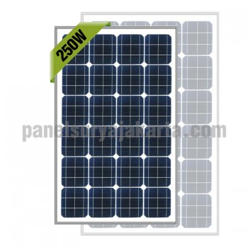 Panel Surya 250 WP Greentek Monocrystalline