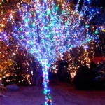 LT 1015_1 - Lampu Taman Dekorasi Hias 100 LED - 10 meter