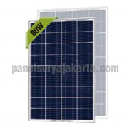 Panel Surya 80 WP Greentek Polycrystalline